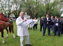 caballos-identificacion-electronica